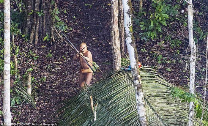 Первый контакт невероятные фотографии аборигенов Амазонки