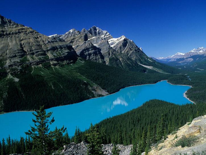 Пейто – горное озеро в Канаде