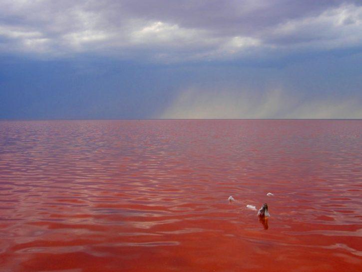 """озеро """"Эльтон"""""""