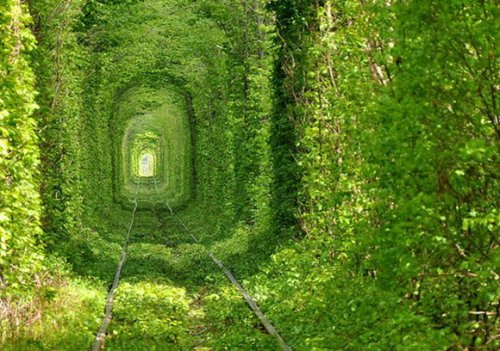 Самые необычные тоннели мира