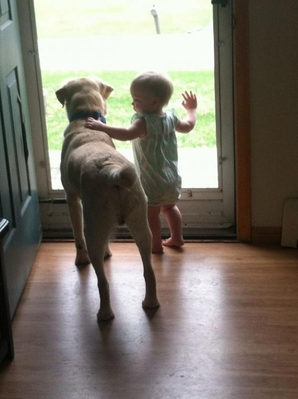 Только пёс будет тебе верной поддержкой до конца своих дней!Только пёс будет тебе верной поддержкой до конца своих дней!