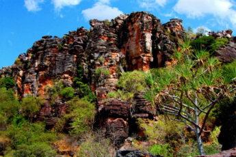 Какаду, Австралия