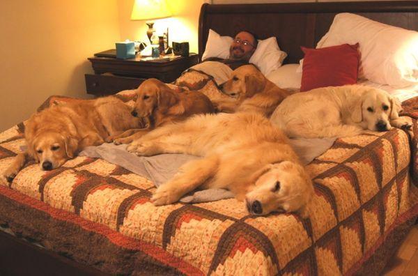Когда она лежит на кровати …