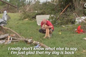 Мужчина думал, что его собаку унесло торнадо