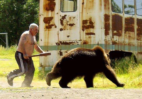 Медведь бросился на человека, но пожалел об этом