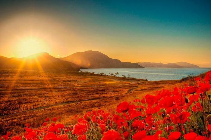 Рассвет – это поразительный и волшебный процесс