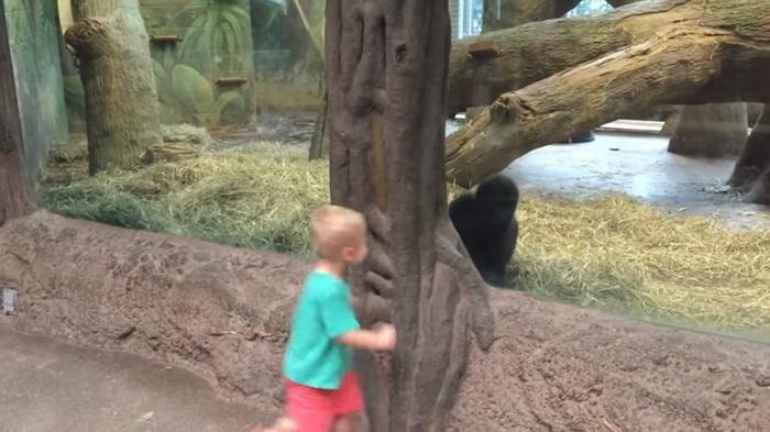 Эта парочка повеселила всех посетителей зоопарка
