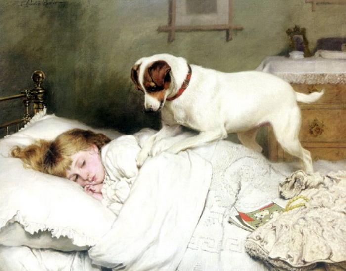 Собаки будят своих хозяев