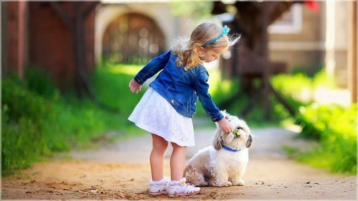 Милейшая схватка щеночка и малыша