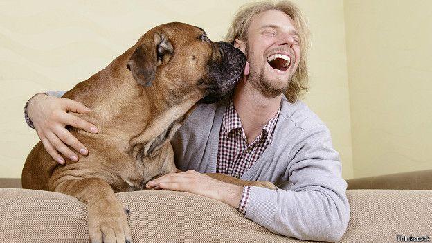 Вот почему собака нужна каждому