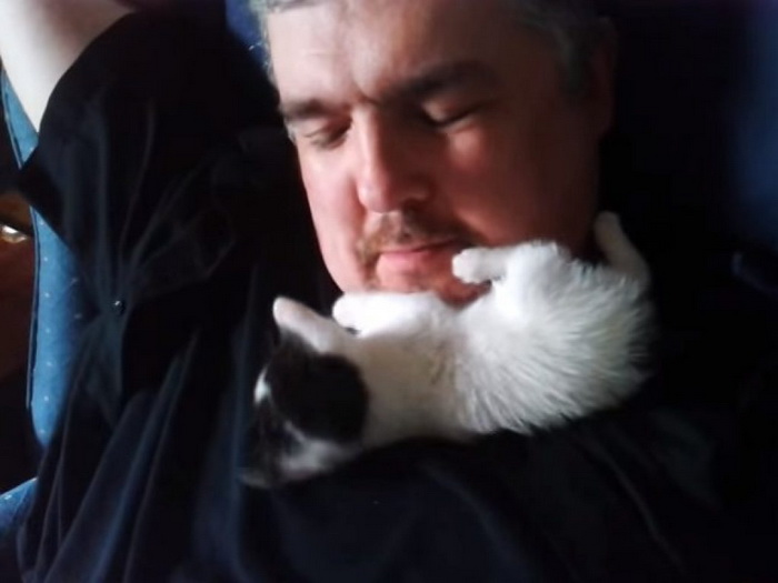 Котёнок признаётся в любви своему хозяину