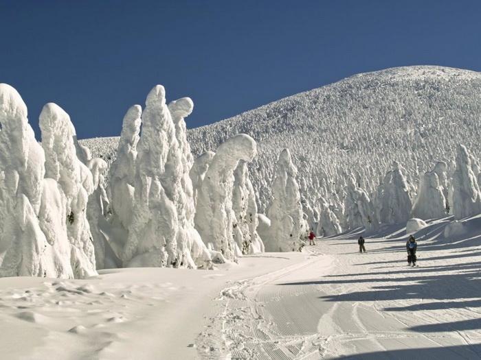 Горячие источники и горнолыжный курорт Зао Онсен