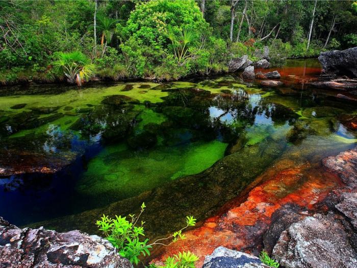 Река Колумбии Каньо Кристалес