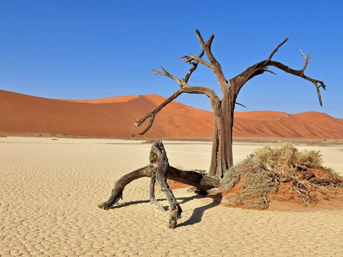 Дейд Влей в Намибии